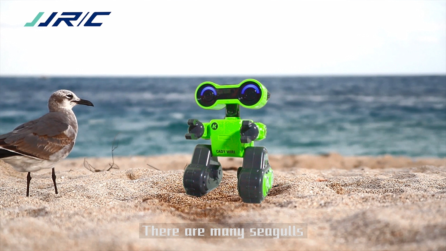 R13 2.4G Remote Control Intelligent Robot With Popular Science Education